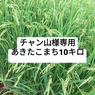 チャン山様専用 あきたこまち10キロ(米/穀物)
