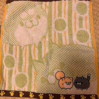ボンレス猫犬タオル(タオル)