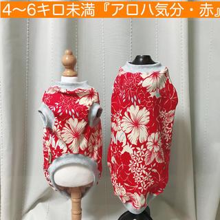 4〜6キロ未満『アロハ気分・赤』メルロコ ダックス 犬服(ペット服/アクセサリー)