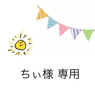 ちぃ様 専用(宛名シール)