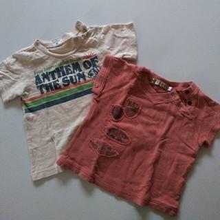 ブランシェス(Branshes)の半袖シャツ2枚セット(Tシャツ/カットソー)