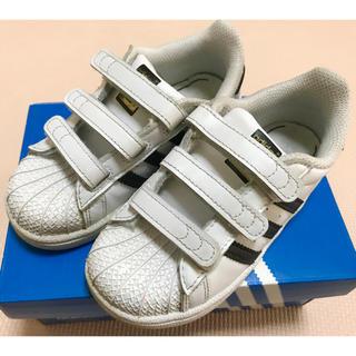 adidas - adidas スーパースター 16cm