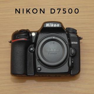 Nikon - Nikon D7500 ボディ 極美品