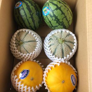 長崎県島原産!!美味しい果物セット!!ととうもろこし10本同梱!(フルーツ)