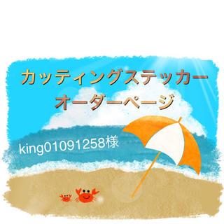 king01091258様 専用(その他)
