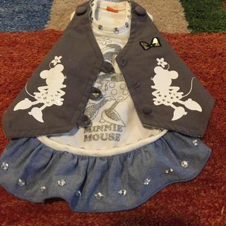 ディズニー(Disney)の【Disney】犬服 3S 女の子用 ほぼ新品。(犬)