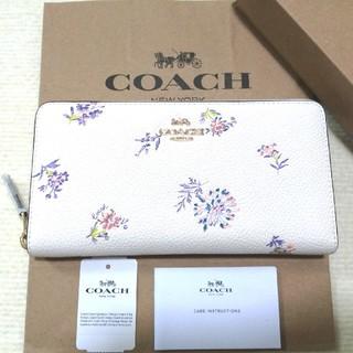COACH - 新品未使用 COACH コーチ 花柄 財布
