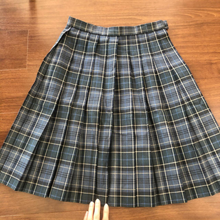 高校 制服 スカート 女子校 コスプレ  中学(衣装)