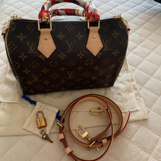 LOUIS VUITTON - Louis Vuitton Speedy 25