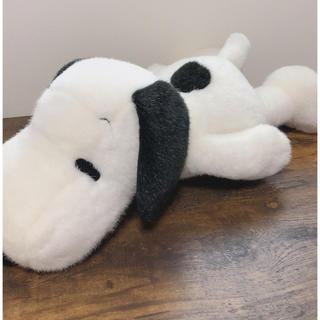 SNOOPY - スヌーピー・寝そべり巨大ぬいぐるみ・昔の物