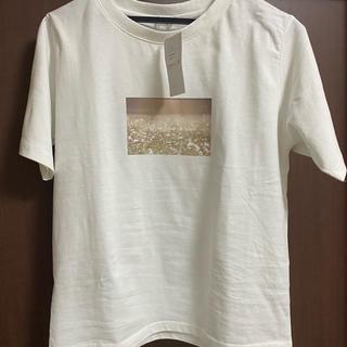 ハニーズ(HONEYS)のTシャツ(Tシャツ(半袖/袖なし))
