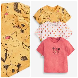 ネクスト(NEXT)の新品❣️ネクスト Tシャツセット コアラ(Tシャツ)