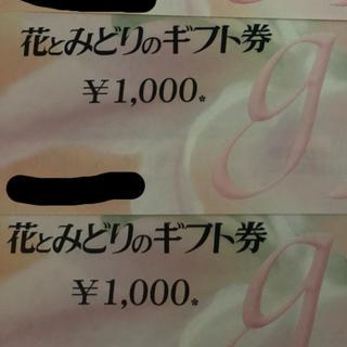 花とみどりのギフト券 5000円