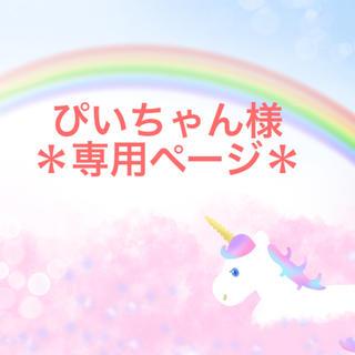*ぴいちゃん様専用ページ*(オーダーメイド)