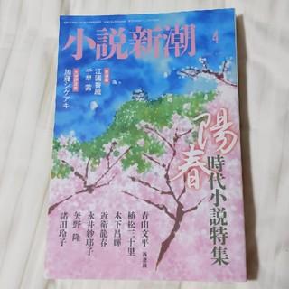小説新潮 2020年 4月号(文芸)