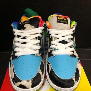 24.5cm Nike SB Dunk Low Ben Jerry's(スニーカー)