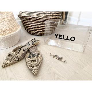 Yellow boots - YELLO パイソンポインテッドミュール.