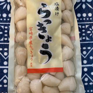 宮崎産 らっきょう(漬物)