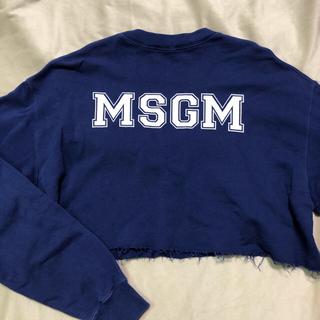 エムエスジイエム(MSGM)のMSGM ショート丈 スウェット(トレーナー/スウェット)