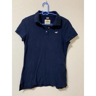 ホリスター(Hollister)のHollister ホリスター ポロシャツ(Tシャツ(長袖/七分))