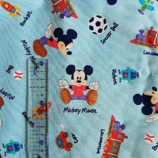 ディズニー(Disney)の日本製生地 ディズニー 水色(生地/糸)