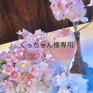 くっちゃん様専用(ショルダーバッグ)