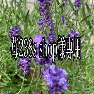 苺238's shop様専用(生地/糸)
