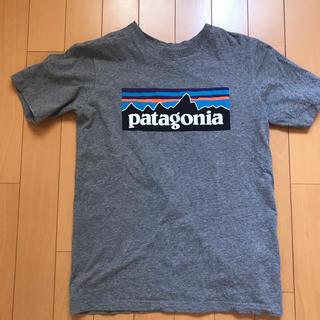 パタゴニア(patagonia)の美品 パタゴニア M 130 140 キッズ Tシャツ グレー (Tシャツ/カットソー)