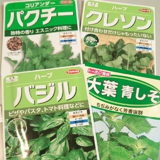 種セット【パクチー、大葉 青しそ、バジル、クレソン】 サカタのタネ トーホク(野菜)