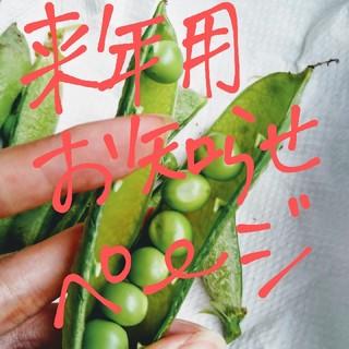 来年2021年用 グリーンピース お知らせページ 鹿児島産(野菜)
