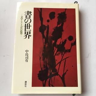 書の世界 -文字とことばの造型-  中島司有  講談社(書)