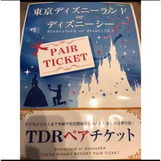 ディズニー(Disney)のディズニーランド or ディズニーシー  1dayペアチケット(遊園地/テーマパーク)