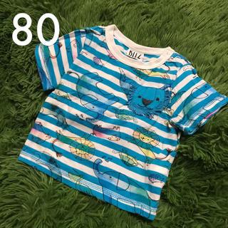 Bit'z - 【送料込】bit'z ボーダー 動物柄 半袖Tシャツ ブルー 80cm