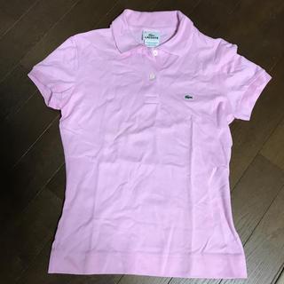 ラコステ(LACOSTE)のラコステ ポロシャツ レディース S(ポロシャツ)