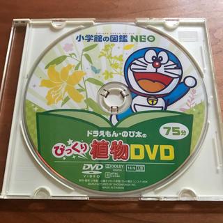小学館 - 小学館の図鑑 NEO   新版 植物   DVDのみ