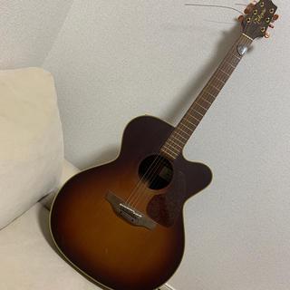 タカミ(TAKAMI)のTAKAMINE  NPT-012BS(アコースティックギター)