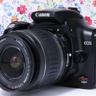 キヤノン(Canon)の★初心者最適機種★Canon Kiss digital レンズキット★(デジタル一眼)