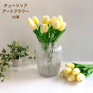 チューリップ 10本 レモンイエロー(その他)