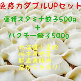 【免疫力ダブルUPセット】薬膳餃子+パクチー餃子免疫力アップ❗️限定1セット(野菜)