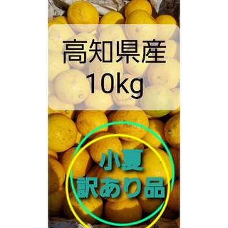 小夏(ニューサマーオレンジ)訳あり品10㌔(フルーツ)