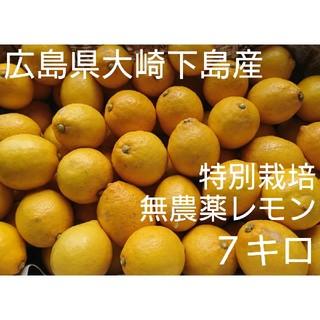 ちびピーちゃん様専用 無農薬!広島県大崎下島産 特別栽培レモン7キロ(フルーツ)