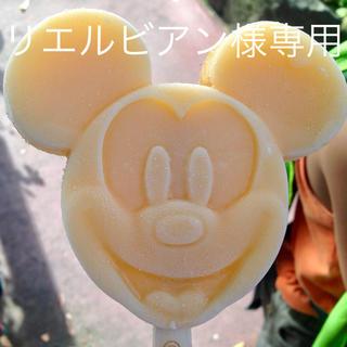 ディズニー(Disney)のリエルビアン様専用(ぬいぐるみ/人形)