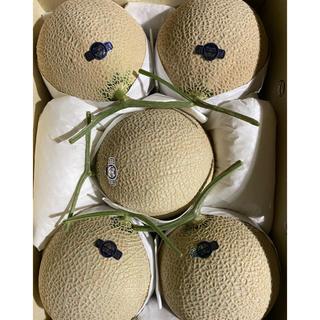 静岡 高級アールスメロン5玉 隔離栽培 アローマ(フルーツ)
