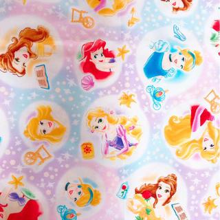 ディズニー(Disney)のプリンセス 生地(生地/糸)