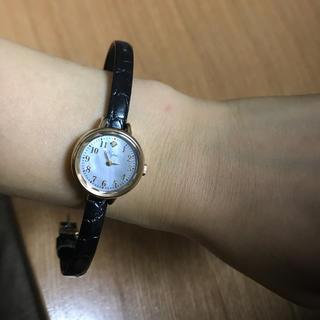 ノジェス(NOJESS)のノジェス 新品未使用 ベルト二つ付き!!(腕時計)