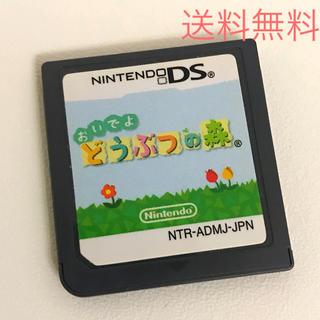 ニンテンドーDS - おいでよ どうぶつの森 中古DSソフト☆送料無料