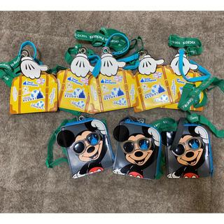 ディズニー(Disney)のディズニー パスケース バケーションパッケージ 非売品(キャラクターグッズ)