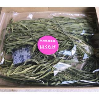 山クラゲお徳用(シャキシャキの食感で人気の山クラゲを2セット同封して運賃節約!(野菜)