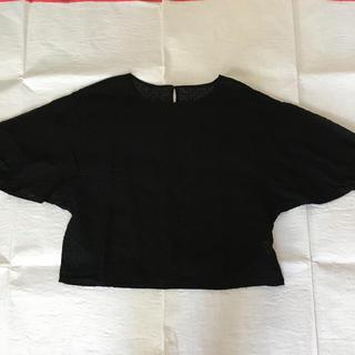 ツムグ(tumugu)のtumugu: 刺繍レースブラウス(シャツ/ブラウス(半袖/袖なし))