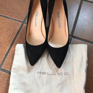 PELLICO - PELLICO